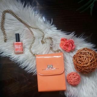 خرید | کیف | زنانه,فروش | کیف | شیک,خرید | کیف | نارنجی ملایم | ...,آگهی | کیف | کوچک,خرید اینترنتی | کیف | جدید | با قیمت مناسب