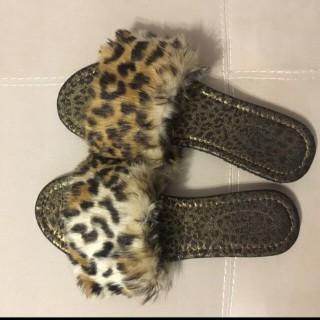 خرید | کفش | زنانه,فروش | کفش | شیک,خرید | کفش | پلنگی | ترک,آگهی | کفش | 38,خرید اینترنتی | کفش | جدید | با قیمت مناسب