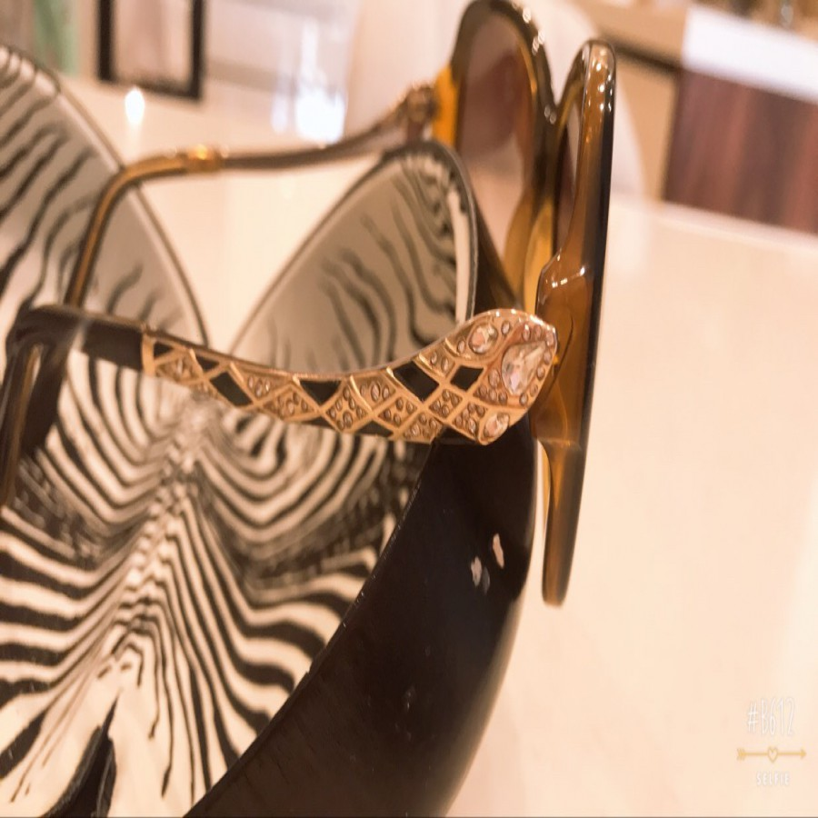 خرید | عینک  | زنانه,فروش | عینک  | شیک,خرید | عینک  | قهوهای  | Roberto Cavalli ,آگهی | عینک  | 13*4.5,خرید اینترنتی | عینک  | درحدنو | با قیمت مناسب